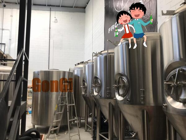 Mexico 15BBL Brewery installation